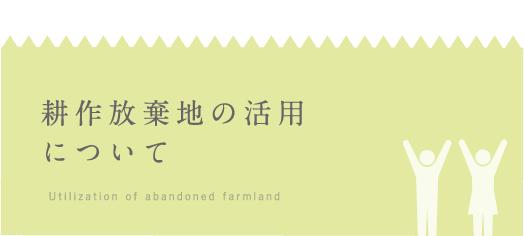 耕作放棄地の活用について